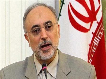 Iran's Salehi optimistic about Bagdad meeting